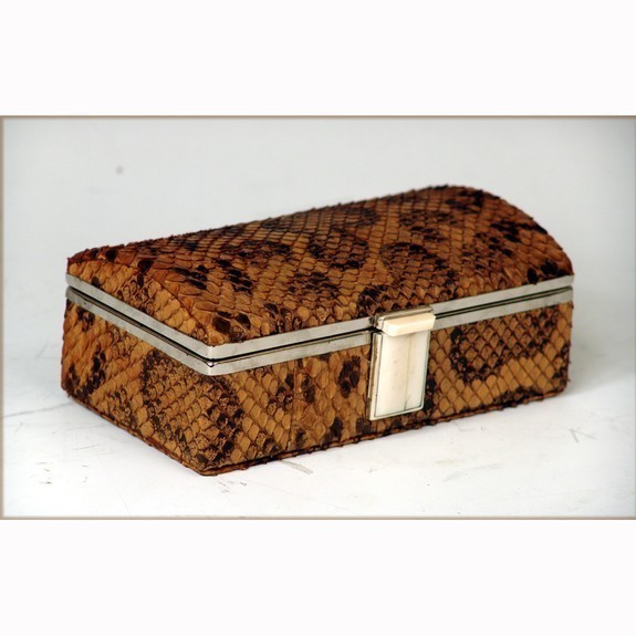 Phyton skin box